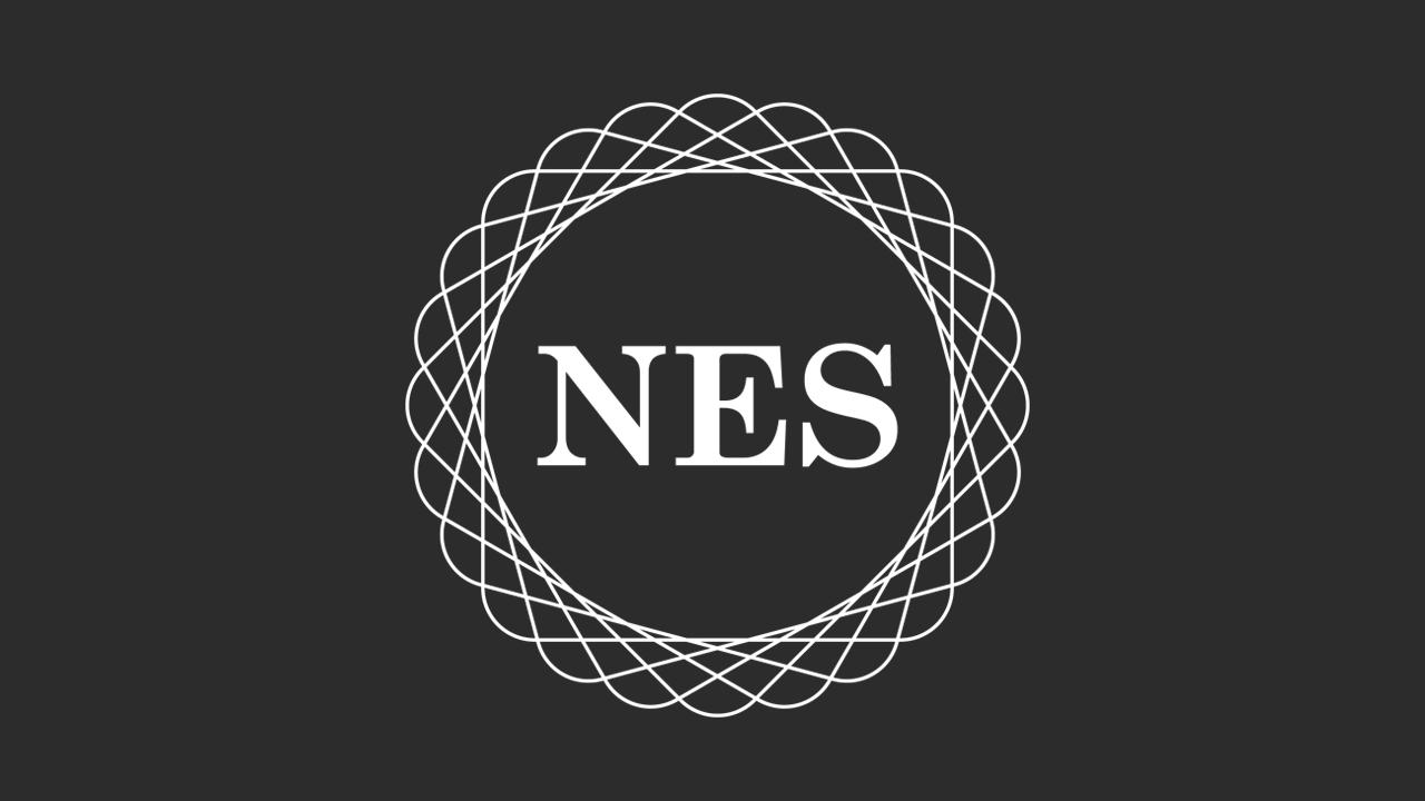 NES Bilgi (e-Invoice)